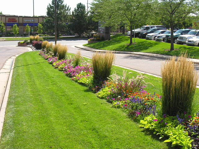 Flower bed with native grass photo flickr photo sharing for Ornamental grass bed
