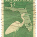 United States postage stamp: Everglades