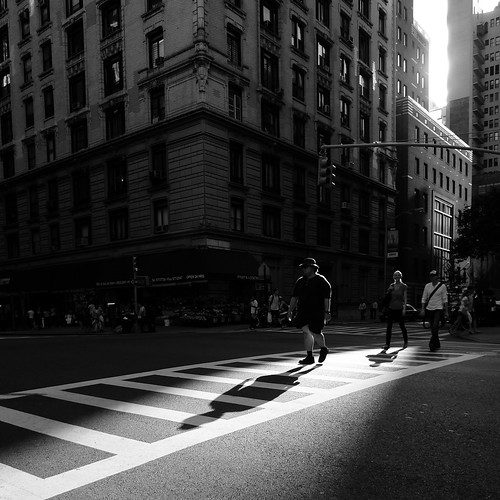 Crossing in the Sunlight