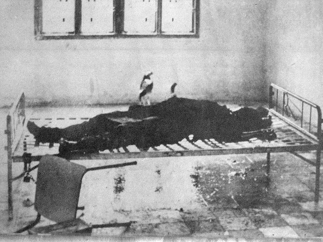 S21 victim, by Ho Van Tay, 1979, who was led to the camp by the smell of decomposing bodies and discovered decapitated victims still shackled to iron beds