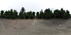 Jewish cemetery Ohlsdorf