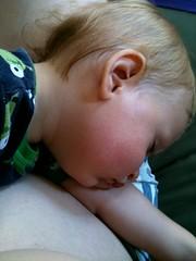 Lap Sleepin