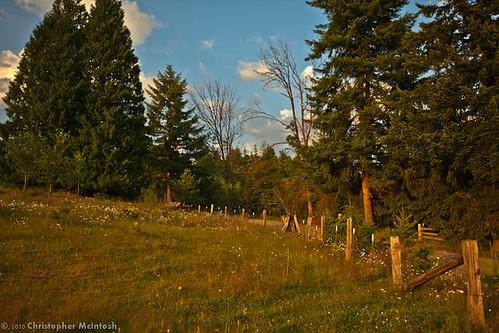 sunset cloud sun sunlight field clouds fence washington farm silvercreek