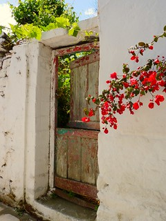 Entrance with bougainvillea
