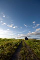 So Long Paddock Farm......