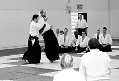 grappling(0.0), aikido(1.0), hapkido(1.0), individual sports(1.0), contact sport(1.0), sports(1.0), combat sport(1.0), martial arts(1.0), monochrome photography(1.0), japanese martial arts(1.0), monochrome(1.0), black-and-white(1.0),