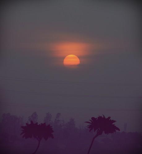 morning noida india clouds sunrise dawn delhi olympus monsoon utopia newdelhi dey anindo premonsoon e520 kalindikunj okhlabirdsanctuary eldeco oniondo anindodey eldecoutopia dndflyway