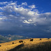 National Bison Range dramatic scenic by USFWS Headquarters