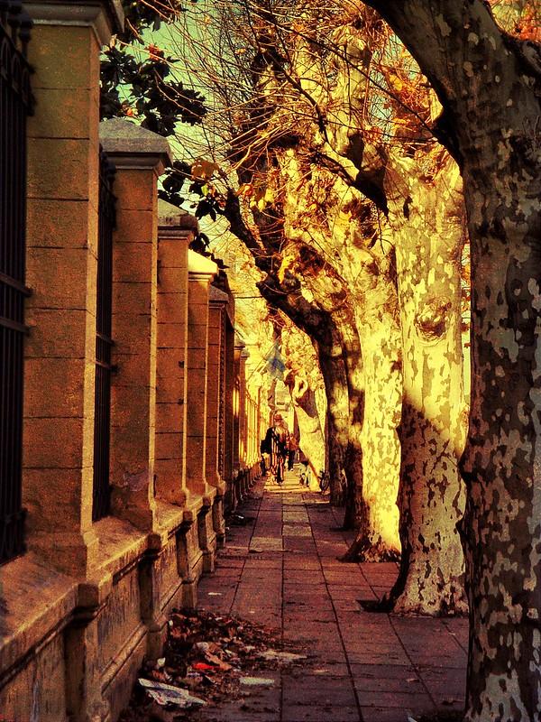 Vereda y abadono - Sidewalk and abandonment