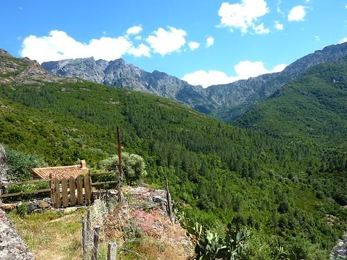Retour à Monte Estremu : arrivée au village et vallée vers Caprunale