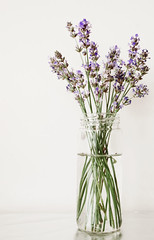 flower arranging, flowerpot, cut flowers, flower, purple, english lavender, artificial flower, floral design, plant, lavender, lilac, lavender, herb, vase, flower bouquet, floristry, ikebana,