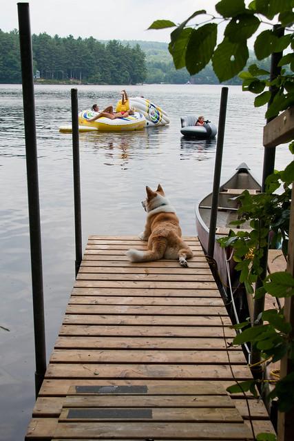 Summer afternoon at the lake