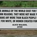 Small photo of Alice Walker, author, loves animals