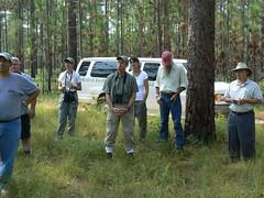 woodland(1.0), forest(1.0), forester(1.0),