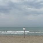Spiaggia comunale libera di Castelporziano