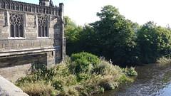 chantry chapel (23)
