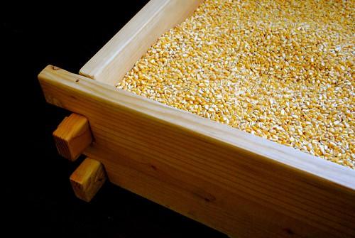 Corn Bed