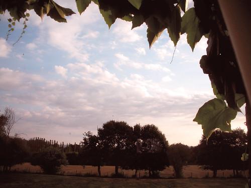 field landscape burgundy paysage bourgogne champ yonne grandsguyons