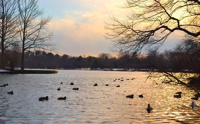 Belmont Lake State Park West Babylon Ny Flickr Photo