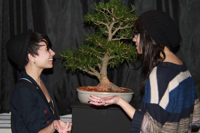 Visitors discus the art of bonsai at Small Scale. Photo by Rebecca Bullene.