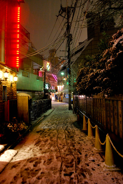 Snowed Tokyo