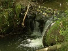 Manor Farm Park - Waterfalls