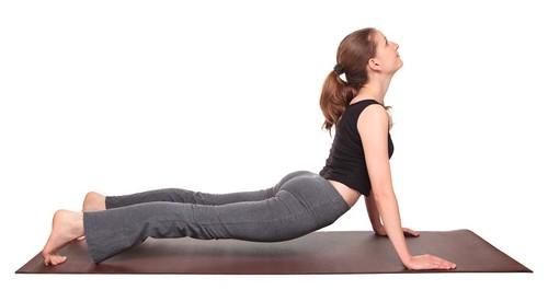yoga poses - Upward Facing Dog position (urdhva mukha svanasana)