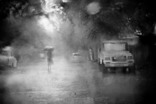 trees bw rain lady umbrella 50mm jeep laila cyclone oof throughthewindshield