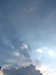 Buddah's rays