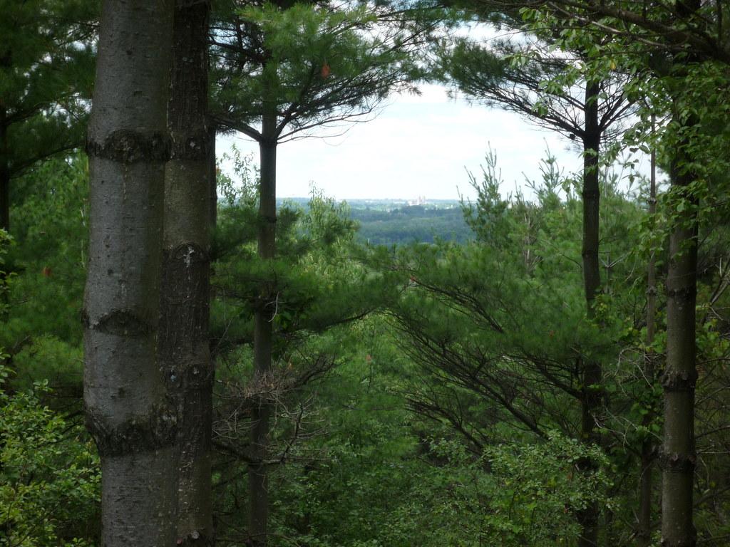 Hiking at Starkey Hill