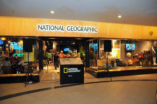 National Geographic Store & Cafe, Lot 10 | RebeccaSaw.com