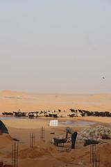 Qibili, Tunisie - Près de la source d'eau chaude