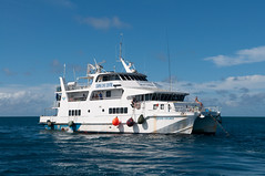 ferry(0.0), luxury yacht(0.0), yacht(0.0), motor ship(1.0), vehicle(1.0), ship(1.0), sea(1.0), boating(1.0), fishing vessel(1.0), passenger ship(1.0), watercraft(1.0), catamaran(1.0), boat(1.0),