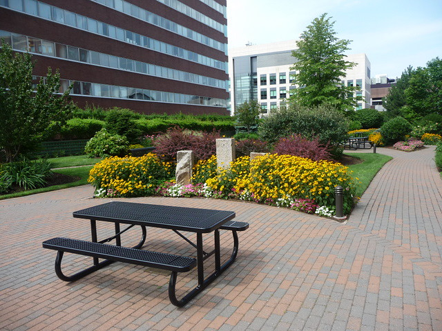 """Kendall Square - """"Waiting for Lunch"""" - roof garden, Cambridge, MA"""