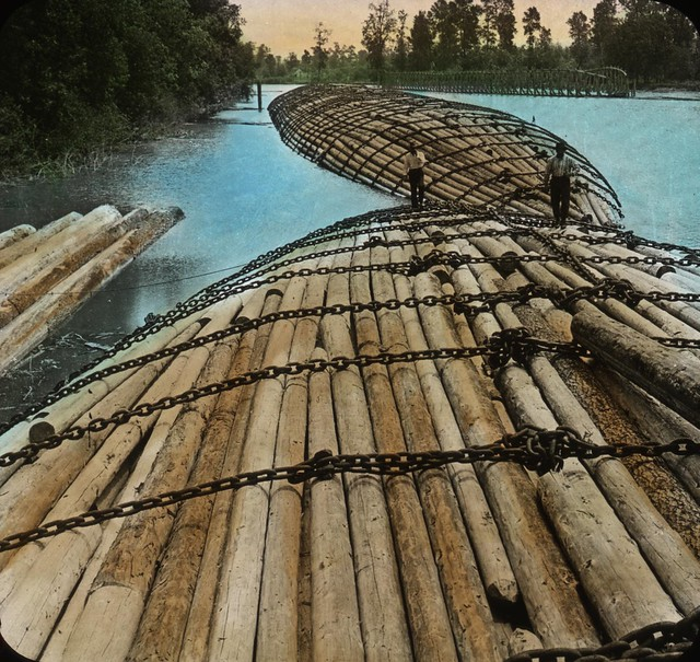Raft of Logs, Columbia River