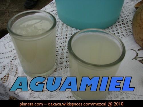 Aguamiel @ Pochimilco, 2010
