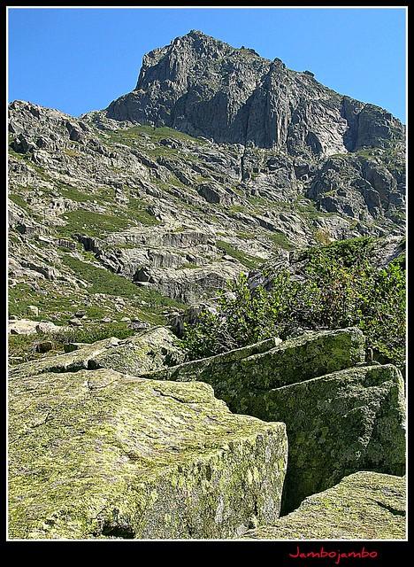 Le verdi rocce delle Gorges de la Restonica - Les roches vertes de le Gorges de la Restonica - The green rocks of the Gorges de la Restonica