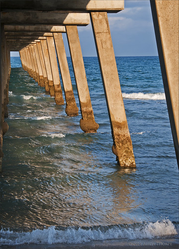 under the pier by Alida's Photos