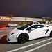 White Lamborghini Luxury Car 141