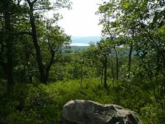 View Along Trail