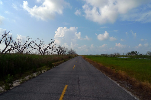 road to cocodrie, la