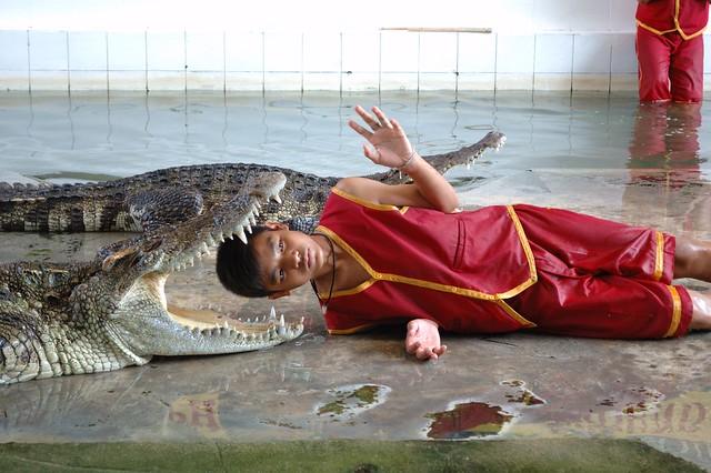 Boy and Crocodile