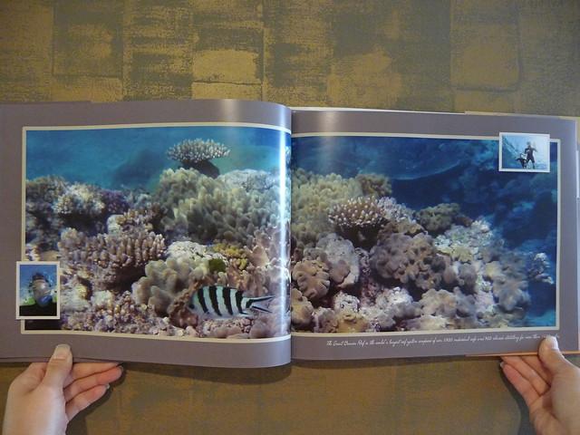 photo book assessment aperture