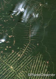 Deforestation, East Rondonia, Brazil, 1986 - Satellite image - PlanetObserver