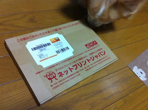ネットプリント 5円 #iPhone4 #iPhone4jp - 無料写真検索fotoq