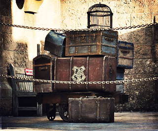 Hogwarts Express Luggage