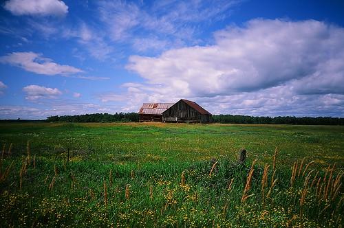 road lake ontario canada film field clouds barn rural landscape colorful fuji meadow bluesky olympus slidefilm greatlakes velvia brightcolors xa 50 slides technicolor aline velvia50 stmarysriver stjosephisland