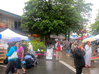 Ladner Village Market | August 8, 2010