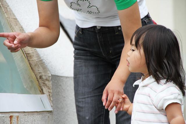 Photo:SAKURAKO - OTARU Aquarium. By MIKI Yoshihito. (#mikiyoshihito)