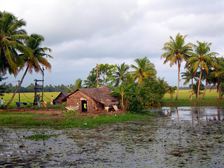 kerala backwaters house